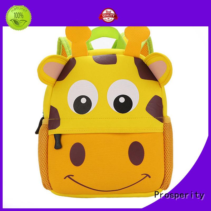 Prosperity bag neoprene carrier tote bag for travel