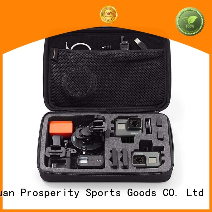 Prosperity EVA case disk carrying case for switch